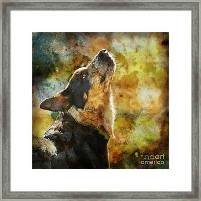 Something In The Wind Framed Print by Judy Wood