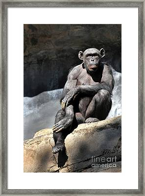 Something To Say Framed Print by Dan Holm