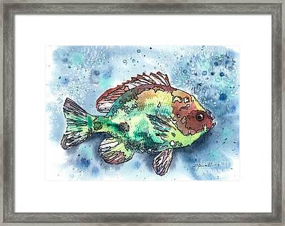 Something's Fishy Framed Print by Barbara Jewell
