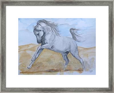Son Of The Desert Framed Print by Janina  Suuronen