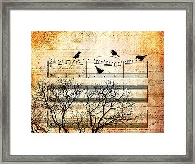 Songbirds Framed Print by Gary Bodnar