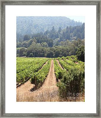 Sonoma Vineyards In The Sonoma California Wine Country 5d24515 Vertical Framed Print by Wingsdomain Art and Photography