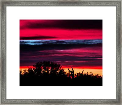 Sonoran Sunset Tucson Desert Framed Print by Jon Van Gilder