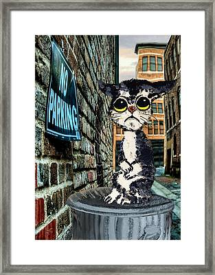 Sorrowful Cat On Can Framed Print by Ron Chambers