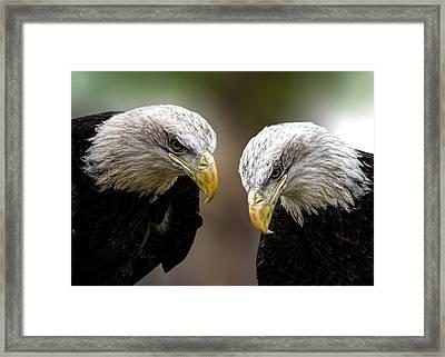 Soul Mates Framed Print by Bob Orsillo