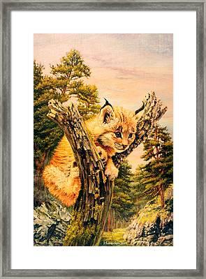 Soul Of Pine Forest Framed Print by Irina Sumanenkova