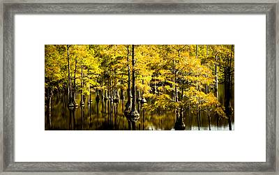 Sounds Of Time Framed Print by Karen Wiles