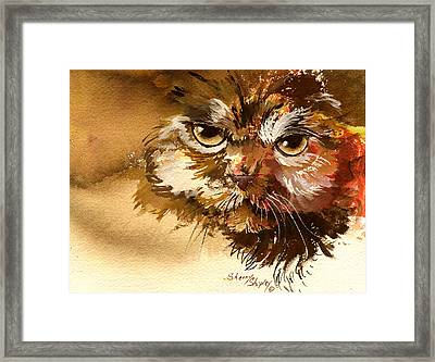 Sour Puss Framed Print by Sherry Shipley