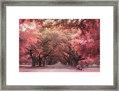 South Carolina Angel Oak Trees Nature Landscape Framed Print by Kathy Fornal