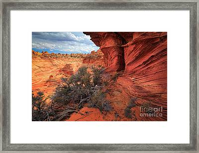 South Coyote Buttes Grand View Framed Print by Inge Johnsson