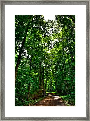 South Rondaxe Road - Old Forge Framed Print by David Patterson
