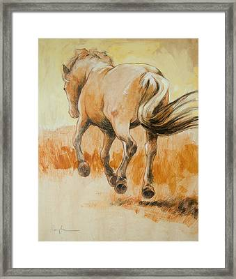 Southbound Framed Print by Tracie Thompson