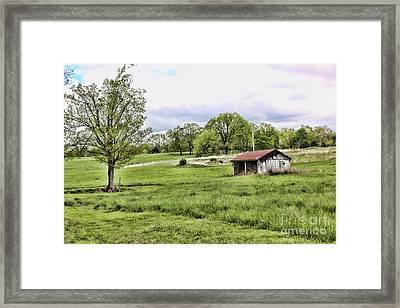 Southern Charm I Framed Print by Chuck Kuhn