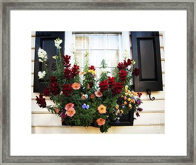 Southern Colors Framed Print by John Rizzuto