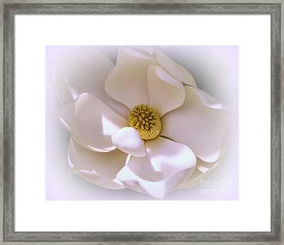 Southern Magnolia Framed Print by Zina Stromberg