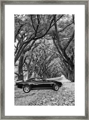Southern Muscle Framed Print by Steve Harrington