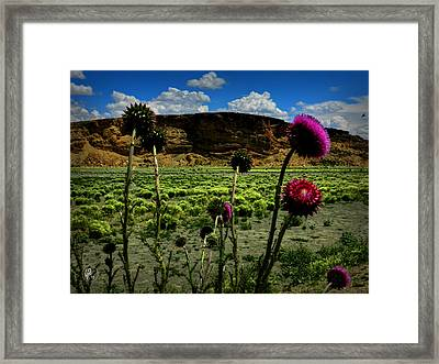 Southern Wyoming 002 Framed Print by Lance Vaughn