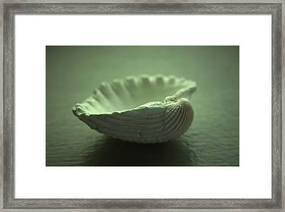 Souvenir Of Summer Framed Print by Barbara  White