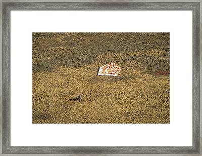 Soyuz Tma-08m Landing Framed Print by Nasa/bill Ingalls
