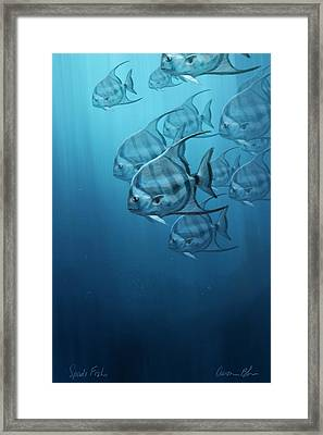 Spade Fish Framed Print by Aaron Blaise