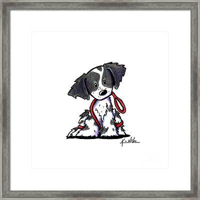 Spaniel Puppy With Leash Framed Print by Kim Niles