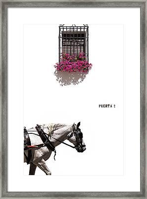 Spanish Scene Framed Print by Mal Bray