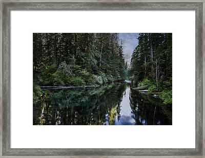 Spawning A River Framed Print by Belinda Greb