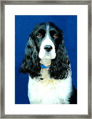 Speaking Of Annie Framed Print by Diana Angstadt