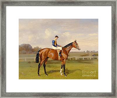 Spearmint Winner Of The 1906 Derby Framed Print by Emil Adam