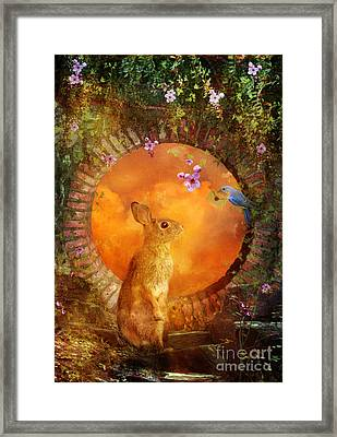 Special Delivery Framed Print by Aimee Stewart