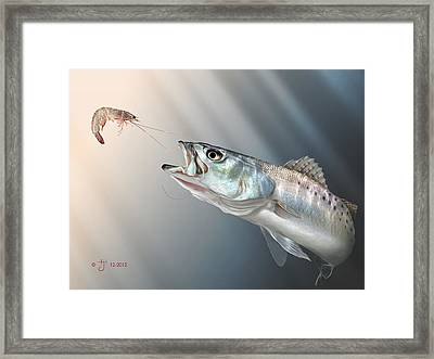 Speck Snack Framed Print by Hayden Hammond