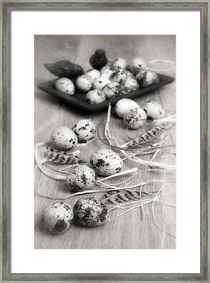 Speckled Quail Eggs Framed Print by Amanda And Christopher Elwell