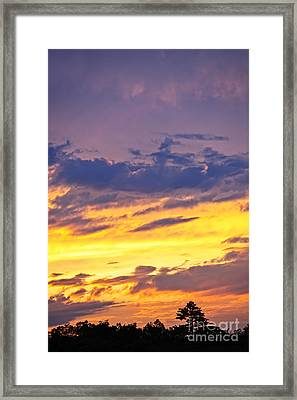 Spectacular Sunset Framed Print by Elena Elisseeva
