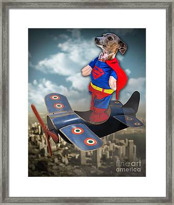 Speedolini Flying High Framed Print by Kathy Tarochione