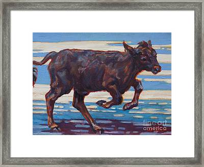 Spence Framed Print by Patricia A Griffin