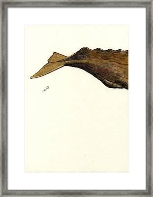 Sperm Whale Third Part Framed Print by Juan  Bosco