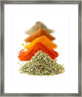 Spices Framed Print by Elena Elisseeva
