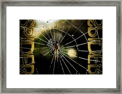 Spider In The Web Framed Print by Toppart Sweden