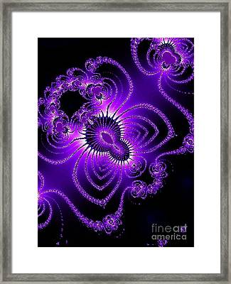 Spider-lace Framed Print by R McLellan