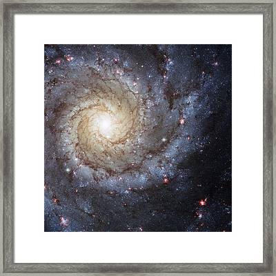 Spiral Galaxy M74 Framed Print by Adam Romanowicz
