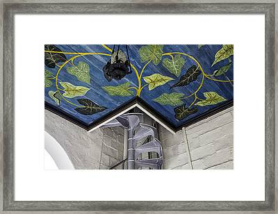 Spiral Stairs And Mural Framed Print by Lynn Palmer