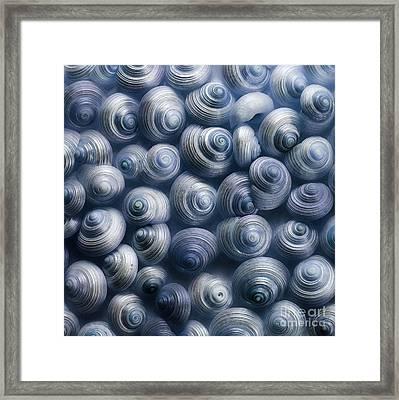 Spirals Blue Framed Print by Priska Wettstein