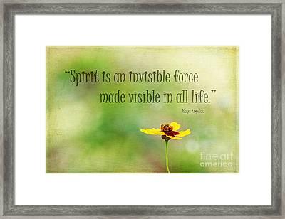 Spirit Framed Print by Darren Fisher