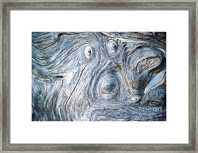Spirit In The Wood Framed Print by Douglas Taylor