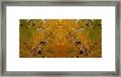 Spirit Of The Forest Autumn Framed Print by Dan Sproul