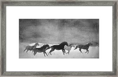 Spirited Horse Herd Framed Print by Renee Forth-Fukumoto