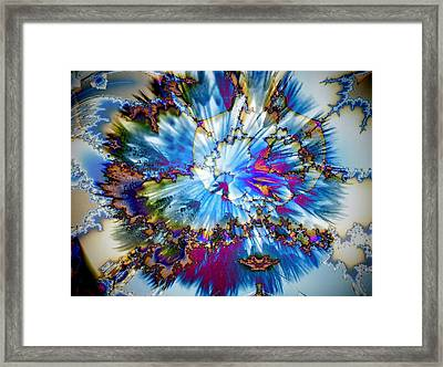 Splaaaat.... Framed Print by Nancy Pauling