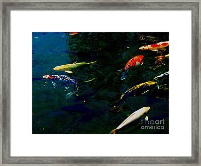 Splash Of Color Framed Print by Greg Patzer