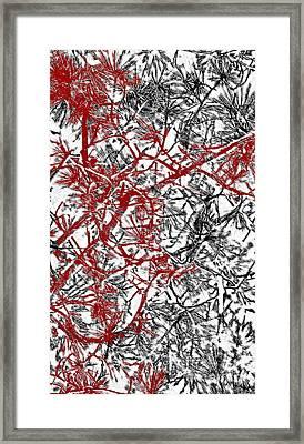 Splash Of Red Framed Print by Gwyn Newcombe