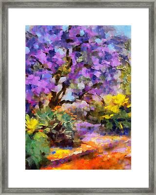 Splendor Of Nature Framed Print by Georgiana Romanovna
